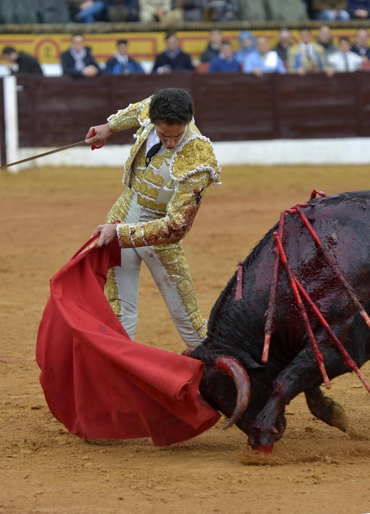 TOROS OLIVENZA | Posada de Maravillas indult&oacute; a 'Corremantas' en la novillada matinal