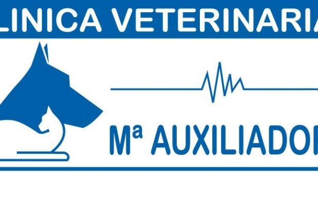 Chequeo y vacunación de tu mascota