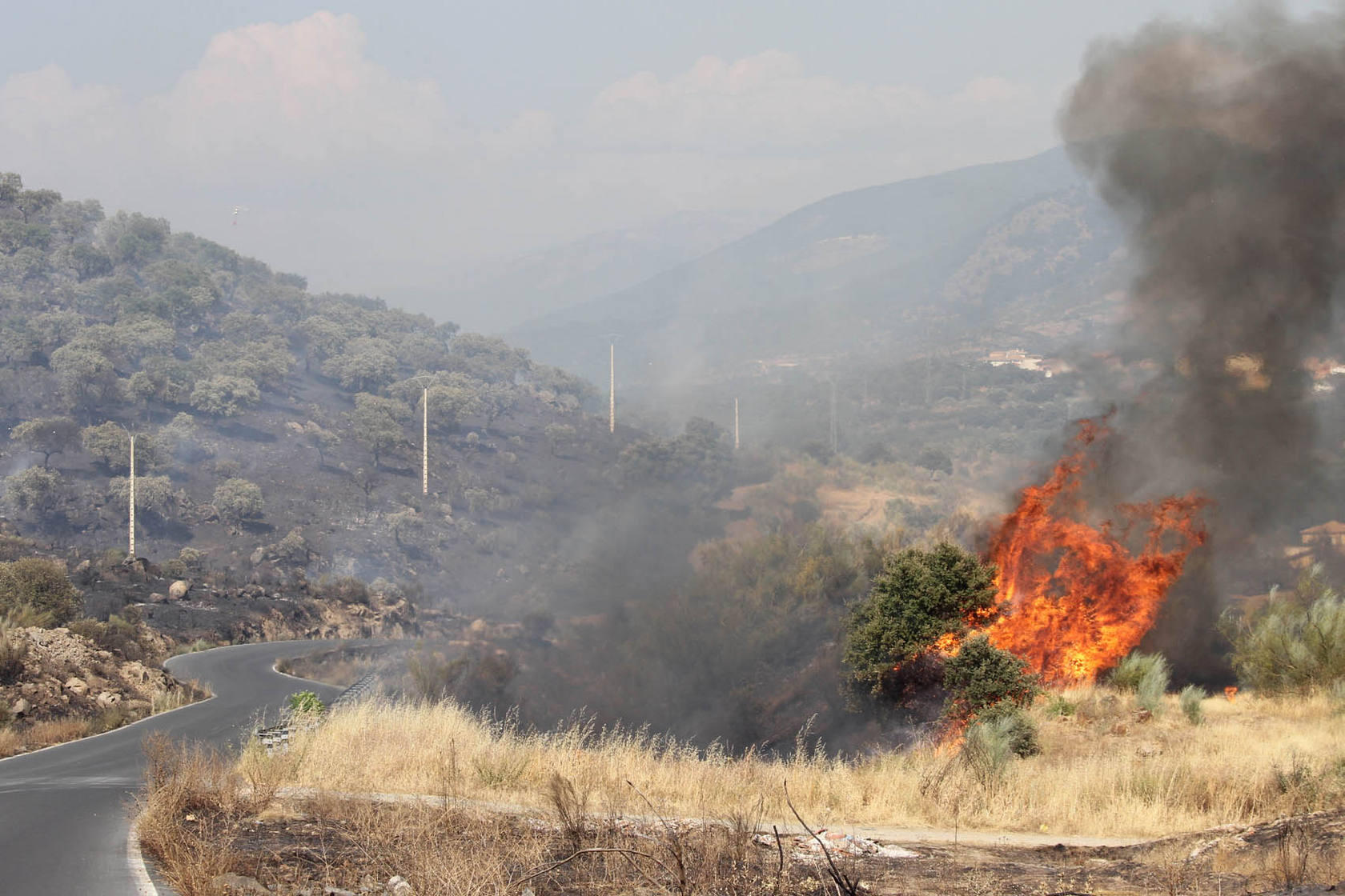 Controlado el incendio que amenazó viviendas en Plasencia